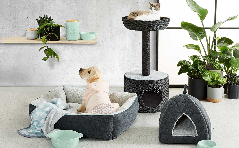 Pet Supplies Accessories Kmart Nz Electricity Wiring Colours New Zealand Pets