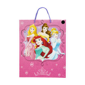 Large Disney Princess Gift Bag
