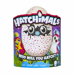 Hatchimals Pengualas - Assorted